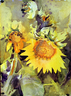 dark yellow close up of a sunflwer in watercolour