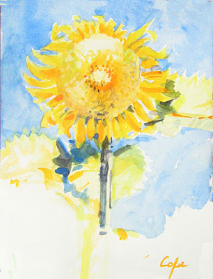 watercolour by adam cope - a perfect beauty sunflower