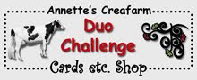 Duo-Challenge blogspot