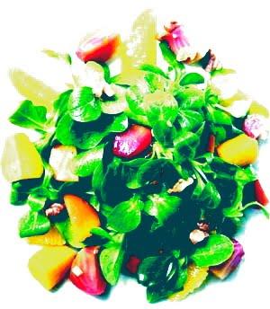 [salad300.JPG]
