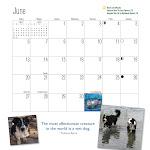 2010 Western Border Collie Calendars