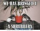 WE HAS BRINGED U A SHRUBBERY