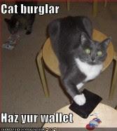 cat burgler haz yur wallet