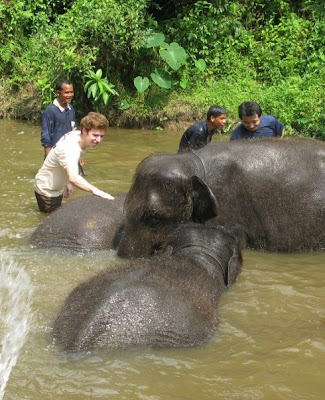 Bathing with elephants, Malaysia