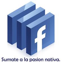 CN CdF en Facebook.