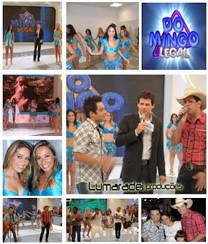 Domingo Legal 23/01/11
