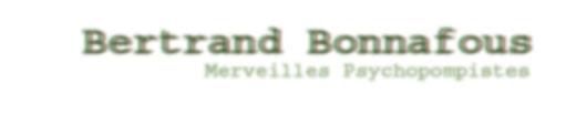 Bertrand Bonnafous