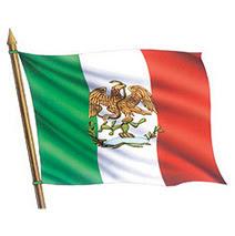 24 de febrero dia de la bandera