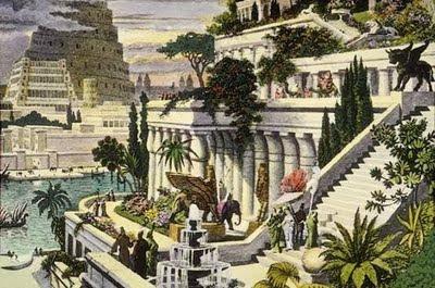 Plantas de interior - Jardins Suspensos da Babilónia