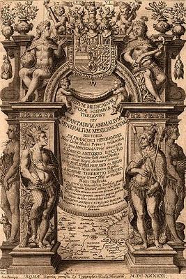 Plantas de interior - Rerum medicarum Novae Hispaniae thesaurus