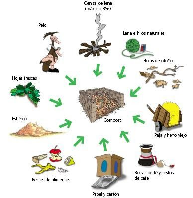 quimica organica, compos