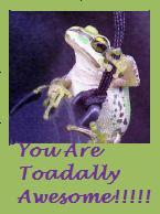 """From<a href=""""http://thetigerlilypad.blogspot.com/"""">Tiger Lily</a>"""