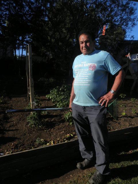 a vegetable garden or two