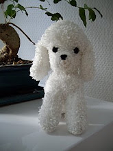 Pudel-Poodle