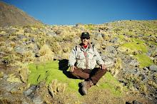 En la piedra verde