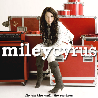 Miley Cyrus   Wall on Miley Cyrus   Fly On The Wall Remixes Downloads
