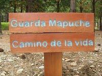 sendero+mapuche