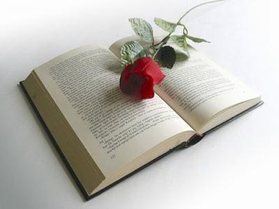 seálador libro