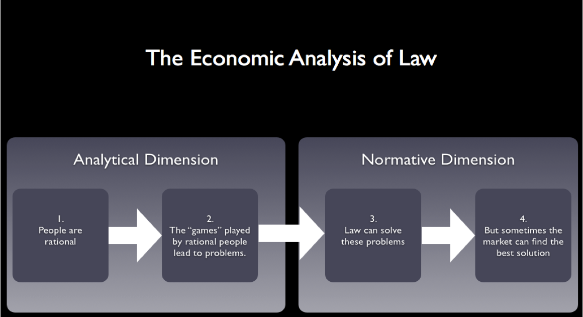 economic analysis of law and policy essay America's economic prosperity, and the world's, depends increasingly on the flow of goods and services  law enforcement partners at the state.