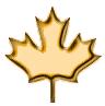 Canadian Junior Resource Stocks