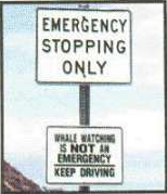 Emergency Stopping Only, Not For Whale Watching Sign
