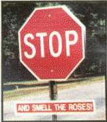 Stop And Smell The Roses Sign