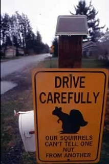 Our Squirrels Can't Tell One Kind Of Nut From Another Sign