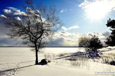 Солнце, Снег, Пейзаж, Облака, Небо, Дерево