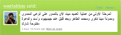 Profilo di Wael Abbas su Jaiku