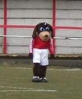 gresley mascot elvis gresley