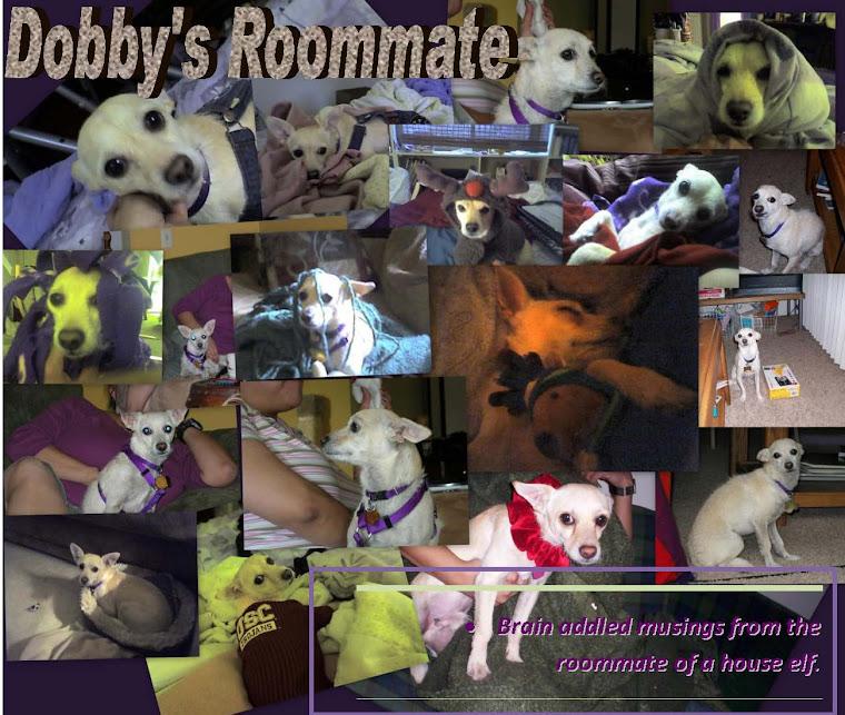 Dobby's Roommate