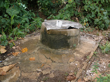The Well on the Island of Tonoas