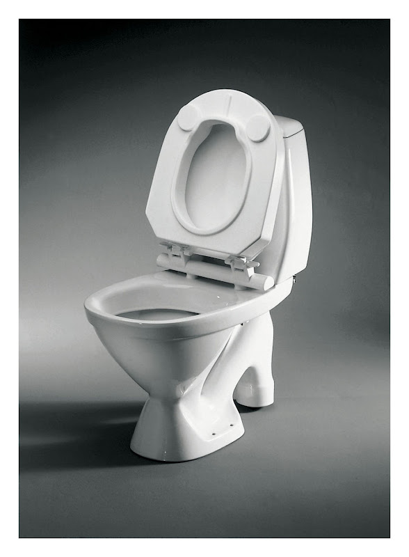 Toilet Bowl (Photo from Google Images) title=