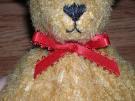 Muhammed the Bear