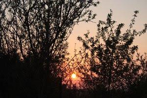 O ar quente do campo, ao pôr do Sol