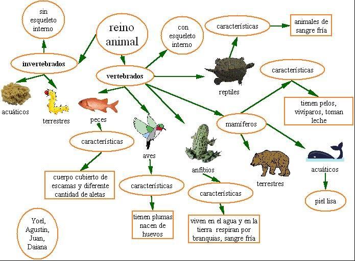 grupo humano tienen relacion medio naturaleza:
