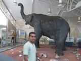 Mastodonte e Moab!