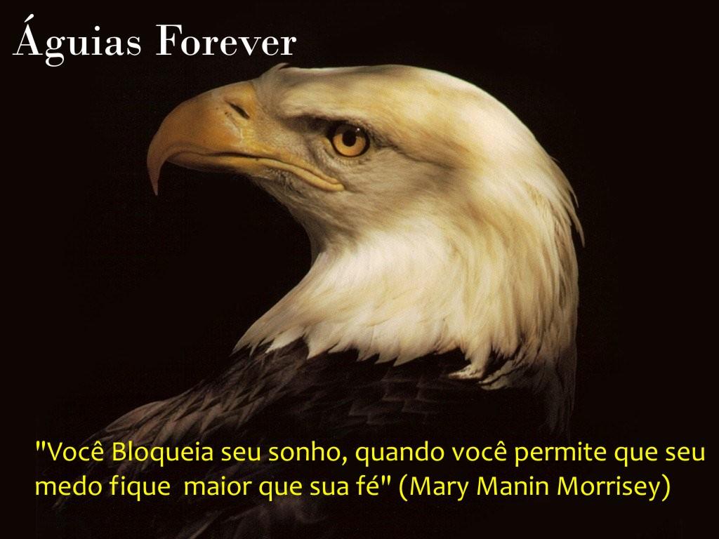 Águias Forever