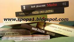 Czytam Polskich Autorów