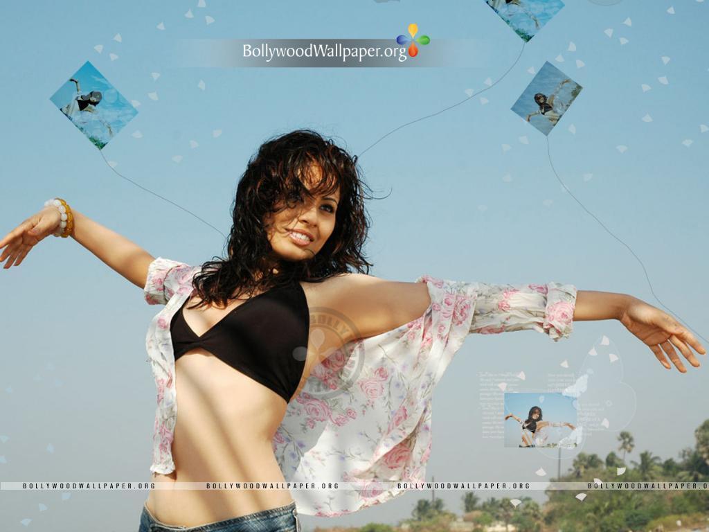 http 1 bp blogspot com x9lcx65 4nq