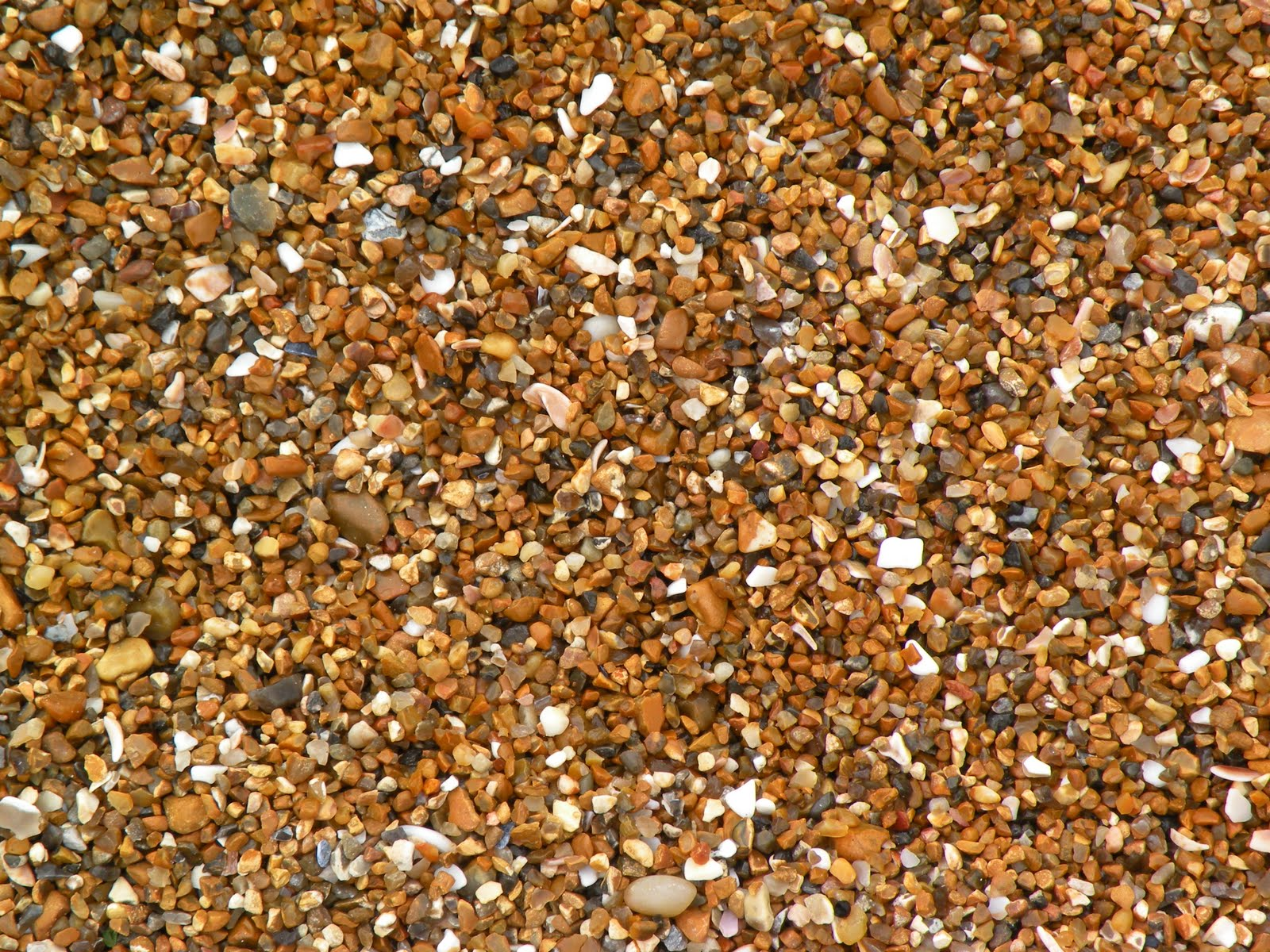 [brighton+sand.JPG]