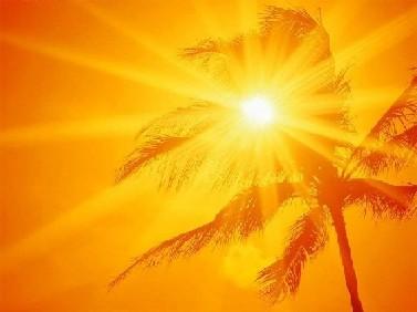 http://1.bp.blogspot.com/_xF9QmHieNes/S7nZY-TSAYI/AAAAAAAAACg/8KbxUhRwqw4/s1600/sol-no-coqueiro.jpg