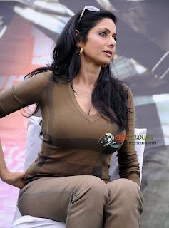 Old actress Sri Devi latest Photos8