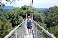 Canopy Walkway in Temburong National Park