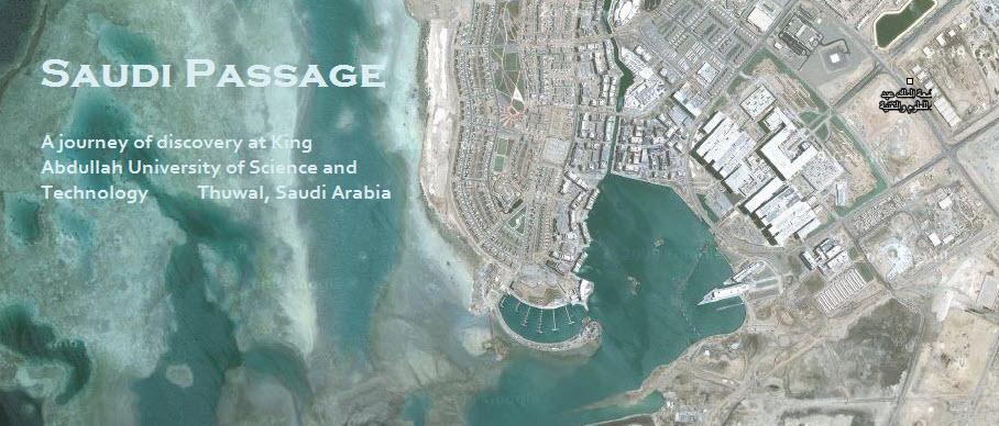 Saudi Passage