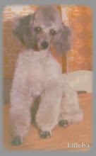 Nicko , 2. desember 1971