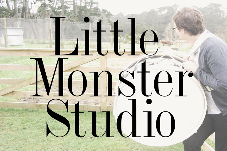 Little Monster Studio