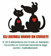 Gli animali hanno un cuore!!!
