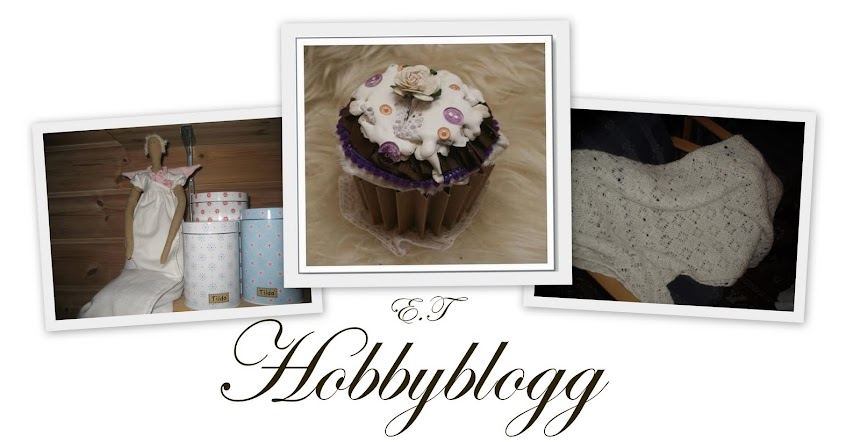 Elisabets hobbyblogg