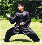 Master Chen Zhonghua